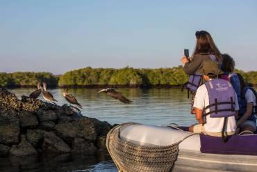 Monserrat Ecuador Galapagos Black Turtle Cove Zodiac Excursion Wildlife - IMG1173 Lg RGB (1)